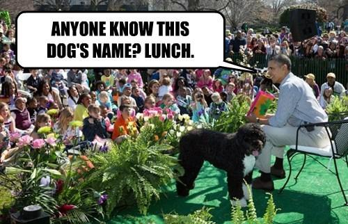 White House Easter Egg Roll Easter Memes With President Obama